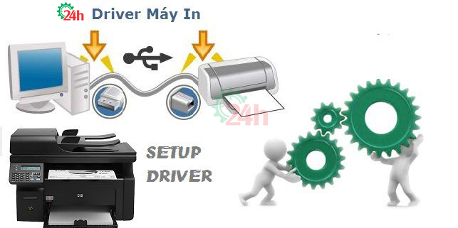 driver-may-in